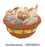 Sea Shells In A Basket Isolate...