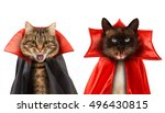 funny cats are celebrating a... | Shutterstock . vector #496430815