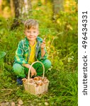 happy boy picking mushrooms in... | Shutterstock . vector #496434331