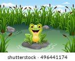 Cartoon Frog Sitting On The...
