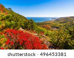 view of acadia national park... | Shutterstock . vector #496453381