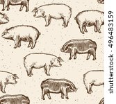 pigs seamless pattern farm pigs ... | Shutterstock .eps vector #496483159