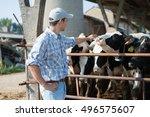 breeder in front of his cows | Shutterstock . vector #496575607