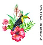 toucan and tropical flowers.... | Shutterstock . vector #496617601