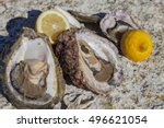 romantic epicure orgy on the... | Shutterstock . vector #496621054