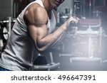 exercise for triceps in the gym | Shutterstock . vector #496647391