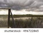 Nature Scene With Calm Swamp...