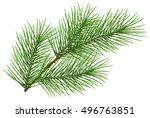 green fluffy pine branch symbol ... | Shutterstock .eps vector #496763851