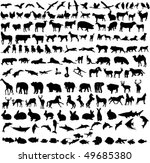 hundreds different animals - vector