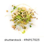 Mix Of Sprouted Flax  Peas ...
