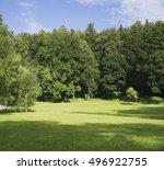morning in a summer garden. | Shutterstock . vector #496922755