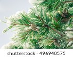 Fir Branch With Pine Cones  ...