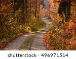 Road In Sunny Autumn Forest