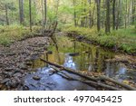 Small photo of Autumn in the Allegheny Mountains of Pennsylvania.