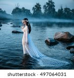 beautiful fairy in a beautiful... | Shutterstock . vector #497064031