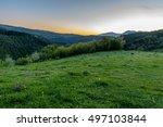 meadow | Shutterstock . vector #497103844