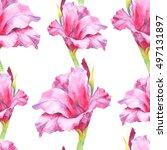 watercolor hand paint pink ... | Shutterstock . vector #497131897