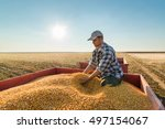 young farmer looking at corn... | Shutterstock . vector #497154067