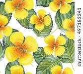 wildflower clematis flower... | Shutterstock . vector #497183341
