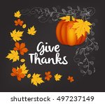 hand drawn thanksgiving... | Shutterstock . vector #497237149
