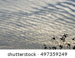 Small photo of Undulated cloud, altostratus cloud