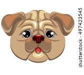pug dog isolated on white...   Shutterstock .eps vector #497423545
