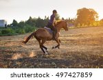 young girl riding horse at... | Shutterstock . vector #497427859