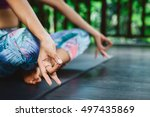 young girl practicing yoga and... | Shutterstock . vector #497435869