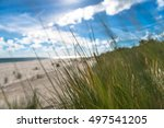 sunny beach with sand dunes and ... | Shutterstock . vector #497541205