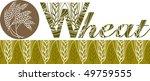 wheat ears banner | Shutterstock . vector #49759555