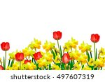 Colorful Flowers Tulips And...