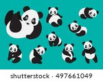 set of cute cartoon panda in... | Shutterstock .eps vector #497661049