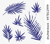 set of brush painted palm... | Shutterstock .eps vector #497812999