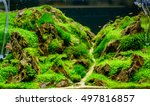 aquarium fish tank. | Shutterstock . vector #497816857