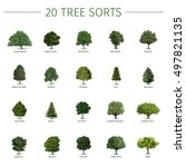 Twenty Different Tree Sorts...