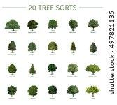 Twenty Different Tree Sorts...