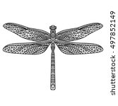 black abstract dragonfly on...   Shutterstock .eps vector #497852149