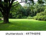 Lawn In A Botanical Garden In...