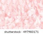 Coral Pink Vintage Color Trend...