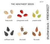 collection of healthiest seeds... | Shutterstock .eps vector #498043027