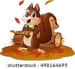 cartoon funny squirrel holding... | Shutterstock .eps vector #498164695