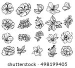 flower set | Shutterstock .eps vector #498199405
