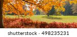 panorama of a glade in autumn... | Shutterstock . vector #498235231