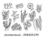 set of seaweed. vector image in ... | Shutterstock .eps vector #498405199