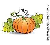 pumpkin with leaves in color... | Shutterstock .eps vector #498432979