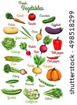 raw vegetables. carrot  tomato  ... | Shutterstock .eps vector #498518299