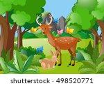 deer and rabbit in the woods... | Shutterstock .eps vector #498520771