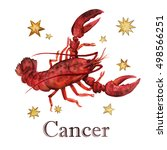 zodiac sign   cancer.... | Shutterstock . vector #498566251