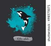 killer whale icon isolated... | Shutterstock .eps vector #498575071