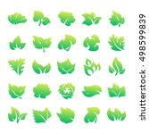 green leaf eco design element... | Shutterstock .eps vector #498599839